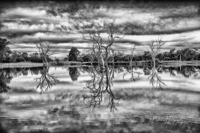 Reflections B&W_4841
