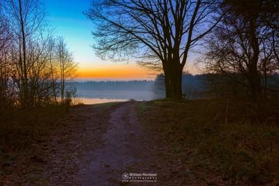 Sunrise View 'Path'