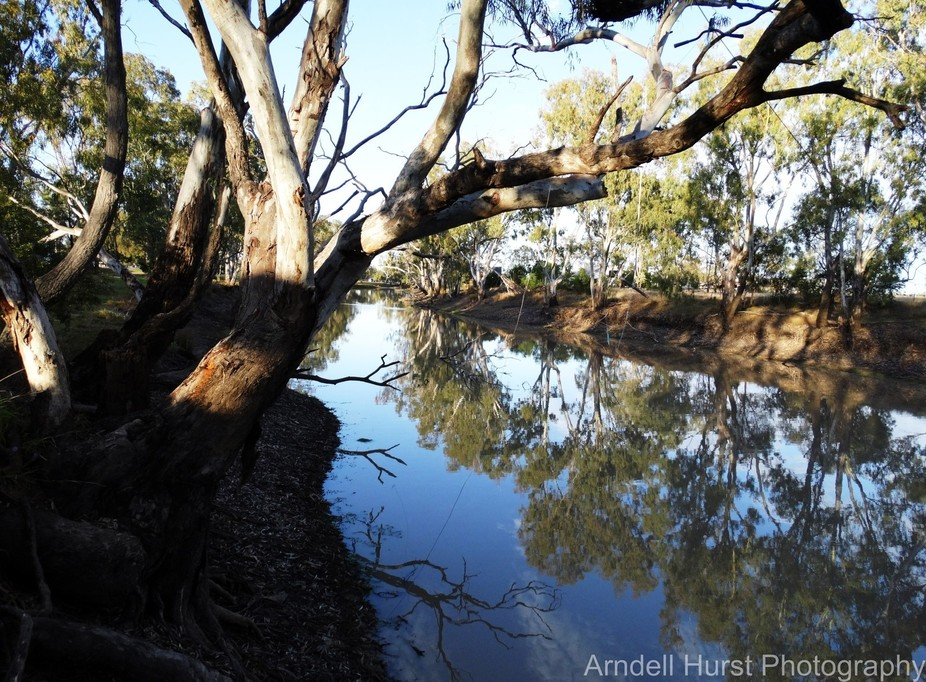 Early morning on the Brigalow Creek