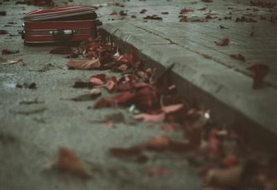 FORGOTEN MEMORIES