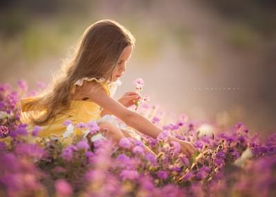 Spring Daydreams