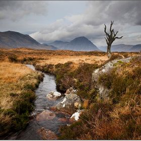 Taken on Rannoch Moor november 2010