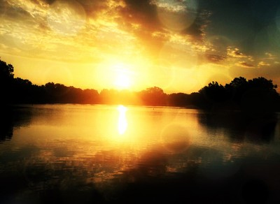 sunset albany county bokeh lights