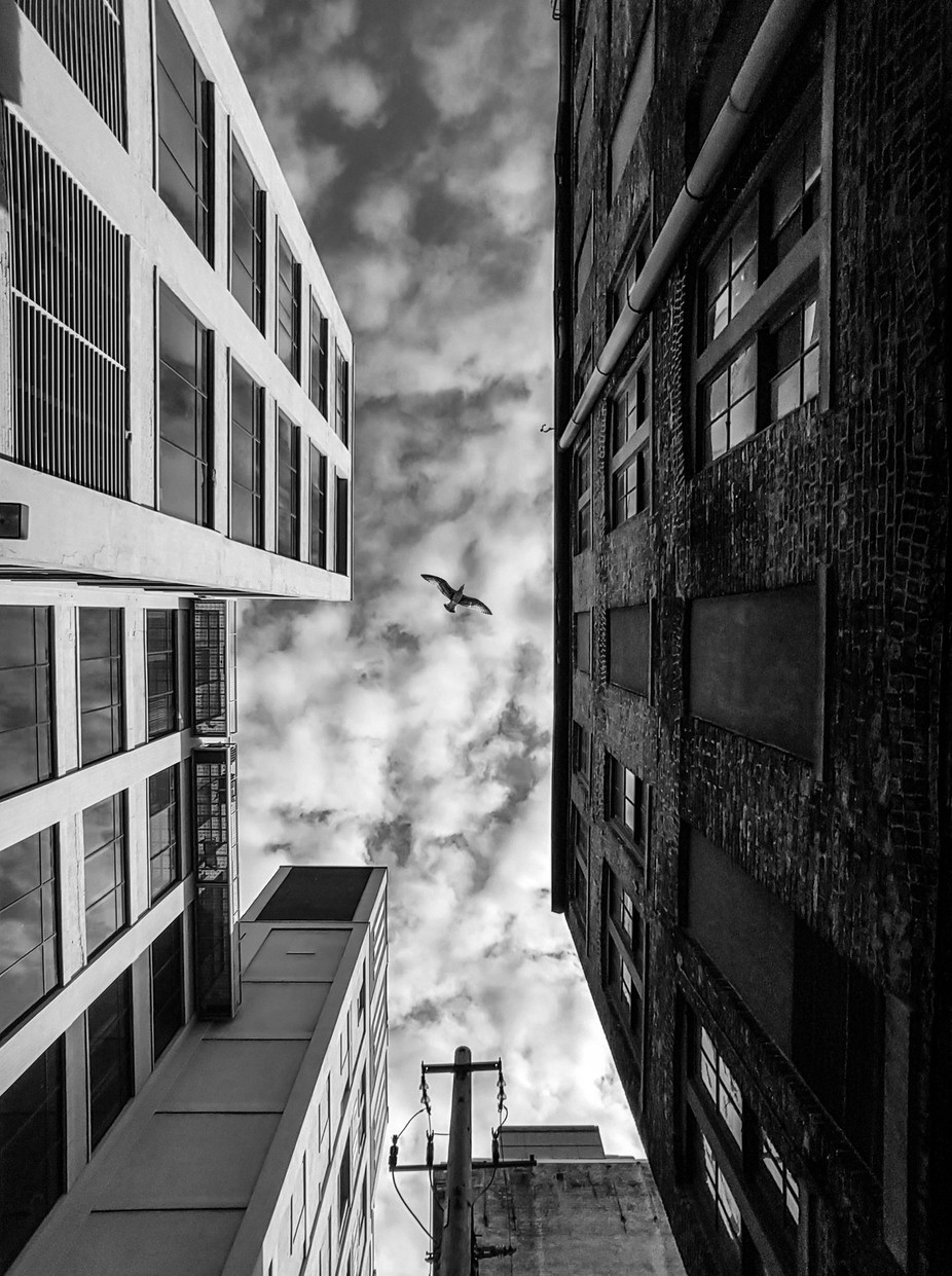 Perspective by kylere - Composing with Diagonals Photo Contest