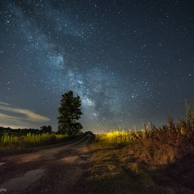 The milky way rises over a dirt road in Upstate NY
