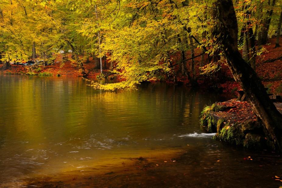 "The Yedigöller National Park (Turkish: Yedigöller, ""seven lakes"") also known ..."