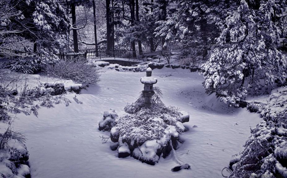 Frozen Japanese Garden