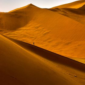 a lonesome wanderer in the Namib desert dunes. https://www.youtube.com/watch?v=CS6kbQ03Q4o&list=PL6D33CCCD32ED6606&index=12