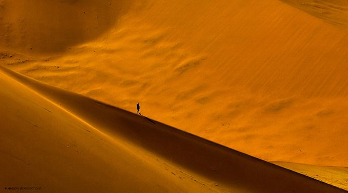 Dune wanderer II by Anderl_R - One With Nature Photo Contest