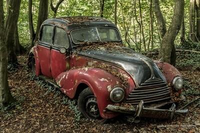 Lost car world