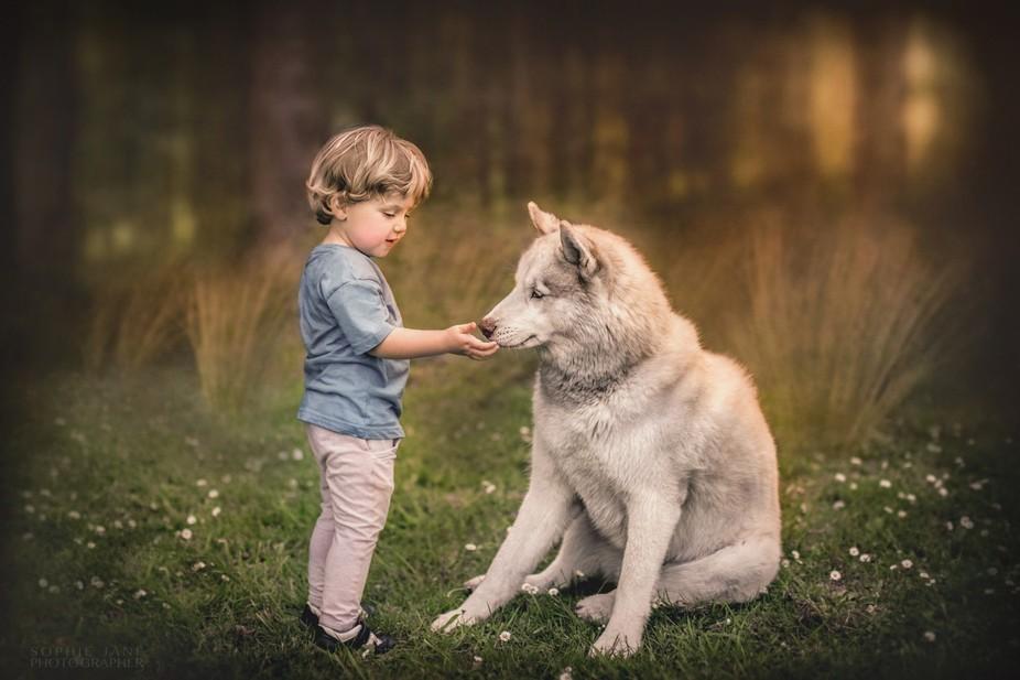 Boy and his Husky