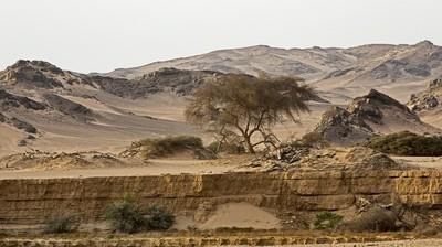 Hoanib Scenery