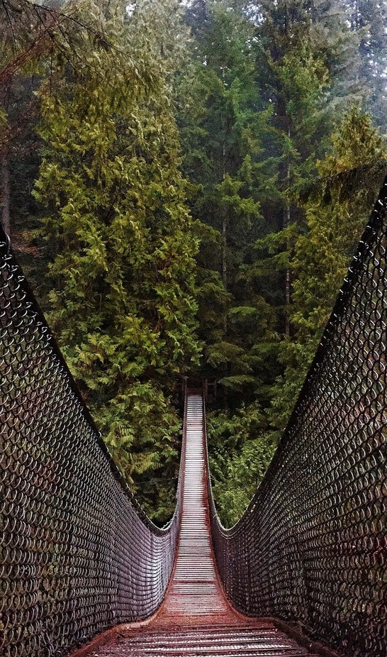 Lynn Valley Suspension Bridge  by liammcdonald - Adventure Land Photo Contest Outside Views