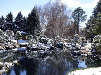 Pond at Denver Botanic Gardens After a Storm on the First Day of Spring