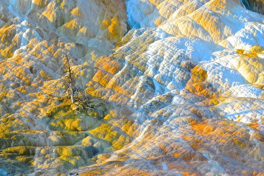 Days First Light, Artists Palette, Palette Spring, Mammoth Hot Spring