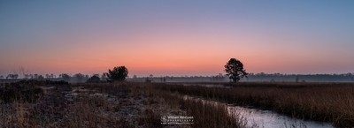 Panorama 'Misty Frosty Twilight'