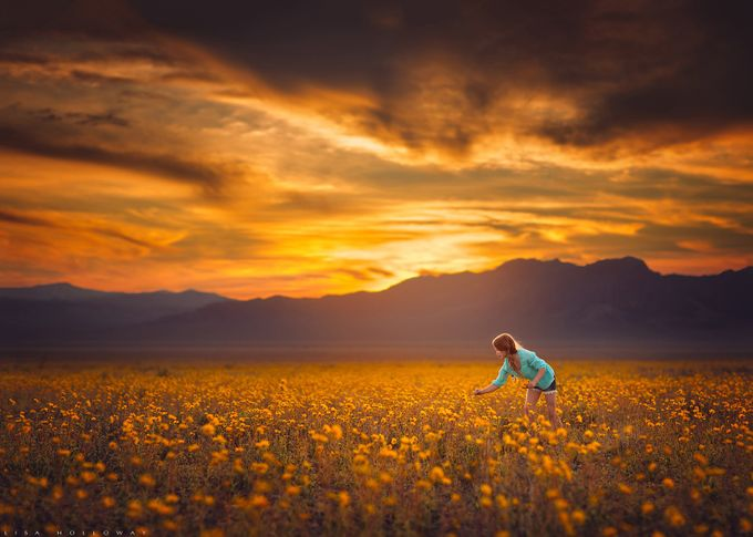 Field of Dreams by lisaholloway - People In Large Areas Photo Contest