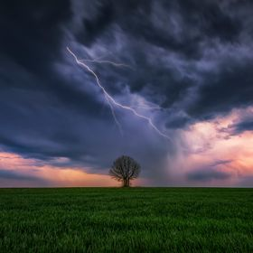 Storm over a spring field with a lonely tree near Varna, Bulgaria