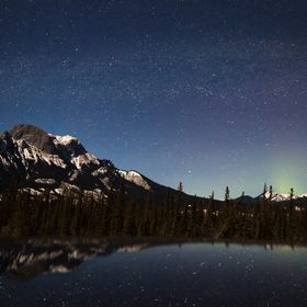 Captured this image on a very cold night drive through Jasper National Park.