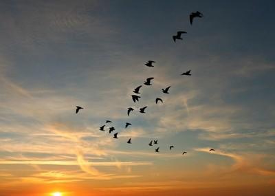 Sunset at Foxton