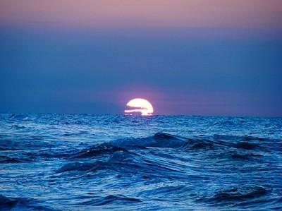 Blue Waves-Saman Nouraie