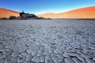 Dry Desert Mud