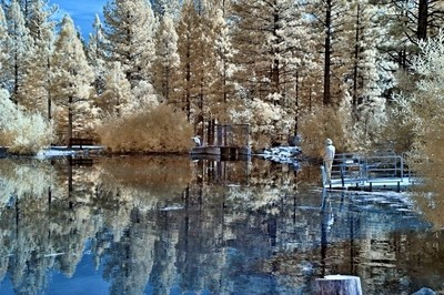 Fishing Marilyn Pond, Reno, Nevada In Infrared.