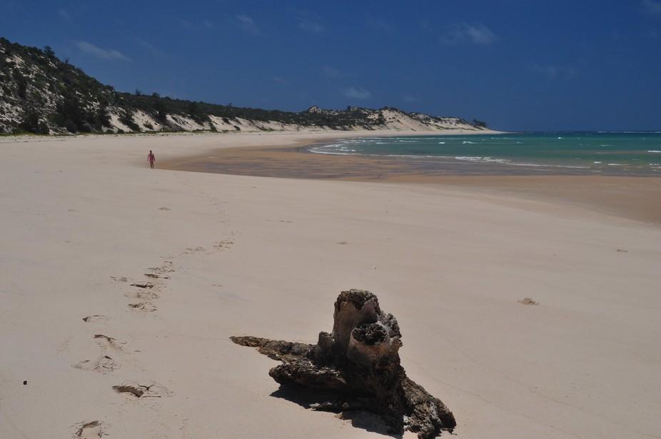 On a desert island