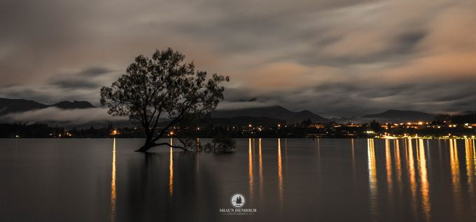 WanakaTree by shaun_denholm - Silhouettes Of Trees Photo Contest