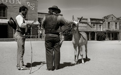 Getting ready to win the West, or maybe not with a Mule.
