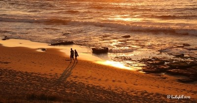 Merewether - early morning