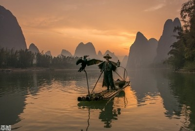 Fisherman with his two fishing birds