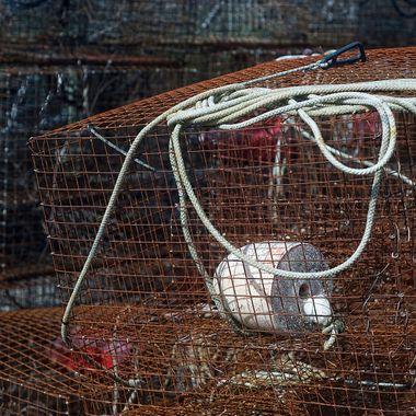 CrabPot White Float