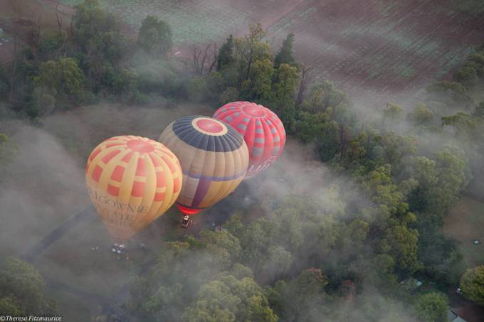 Balloons in the Mist by FledgelingImages - Above Or Below Photo Contest