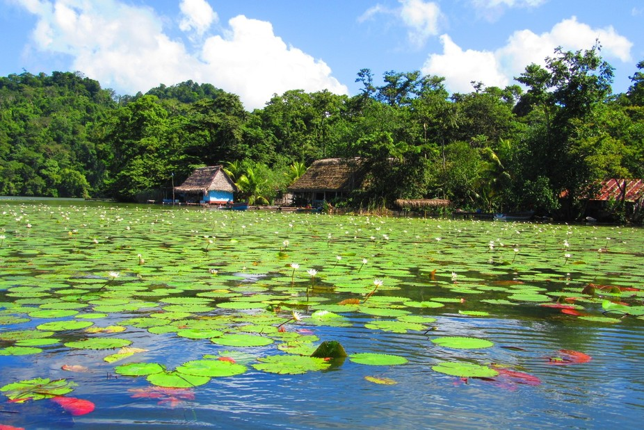 Rowing on the Rio Dulce