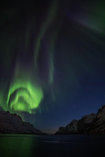 Northern Light in Ersfjordbotn