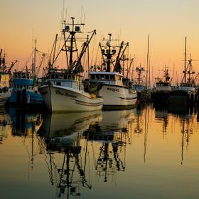 When you cannot think of a good name, read the names on the boats.  Squalicum Harbor, Bellingham, WA