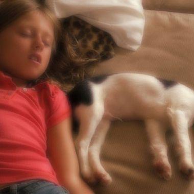 Puppy Dreams
