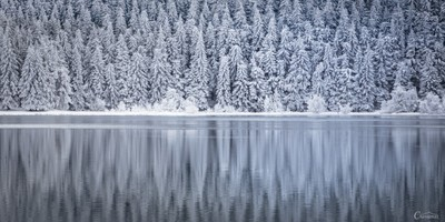 Winter reflection II