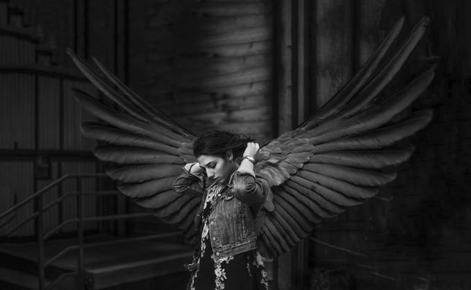 Wings by kylere - Isolated Photo Contest