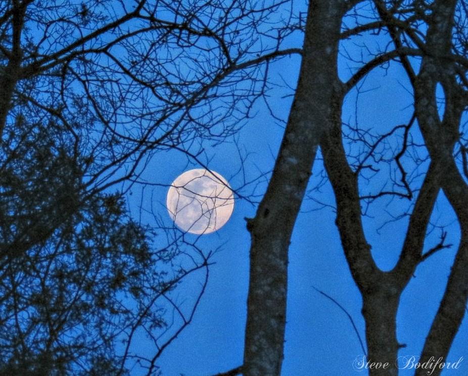 """Goodnight stars,Goodnight air,Good night noises everywhere, Goodnight Sierra Sky ...Goodnight Moon"""