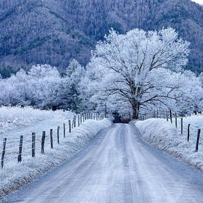 #cadescove #frost #beautiful