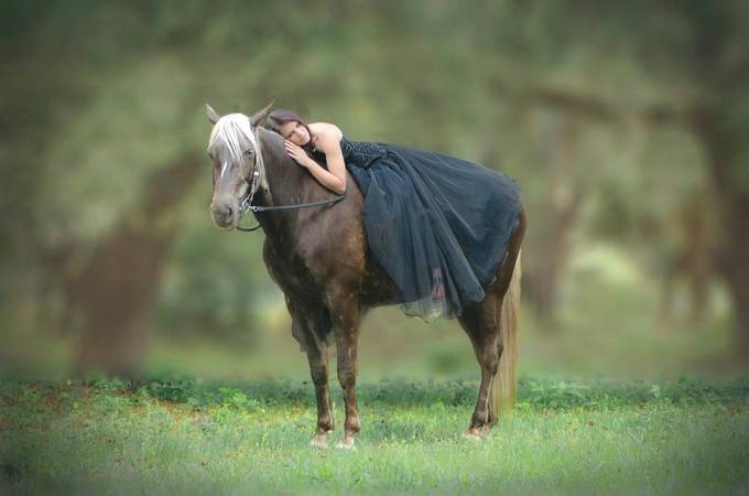 A quiet Moment by rockinhorseshoedesigns - Elegant Moments Photo Contest
