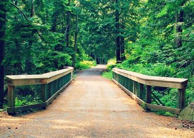 Willingdon Beach Trail