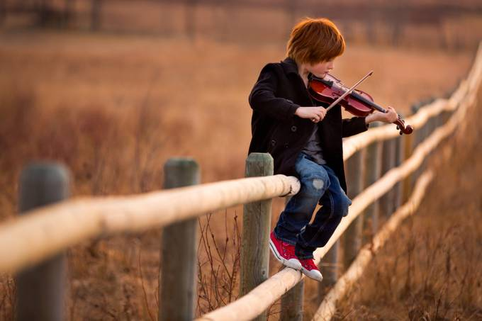 The Violin by JenniferKapala - Fences Photo Contest