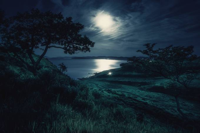 Moonlight Sonata by voss - Nature And The Night Photo Contest