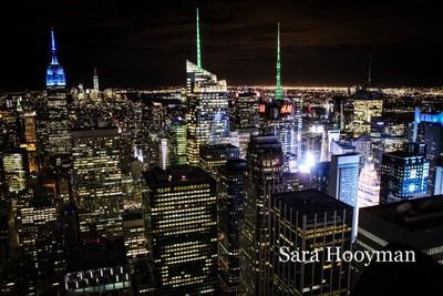 NYCCitySkyline1 (1 of 1)