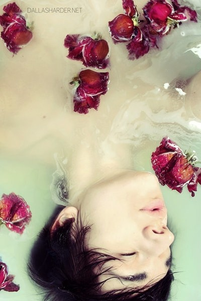 Lost In A Sea Of Roses