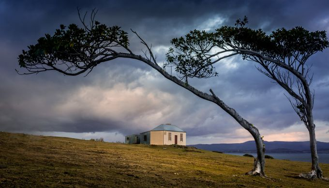 Maria Island by AshThomson - Isolated Photo Contest