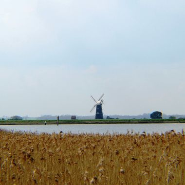 View of Berney Arms Windmill over Breydon Water in Norfolk, UK, taken from Burgh Castle.